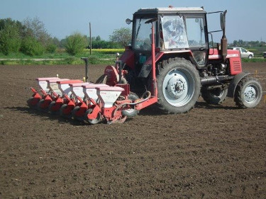 Sowing (1)